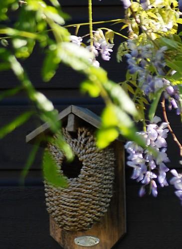 oosterse-tuin-vogelhuisje